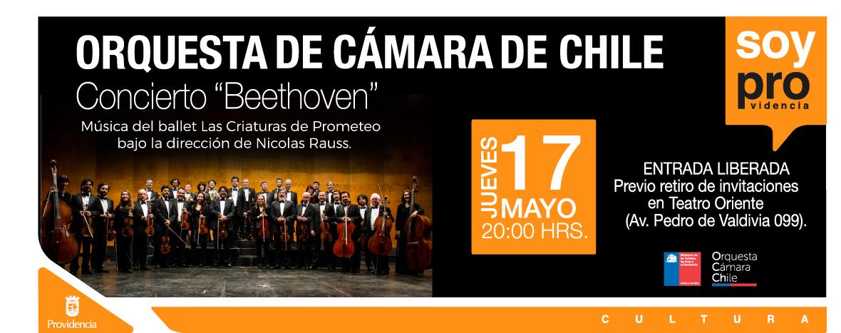 Banner-Web-Orquesta-de-Camara