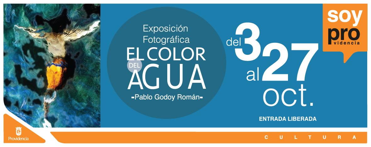 banner-Exposicion-Pablo-Godoy