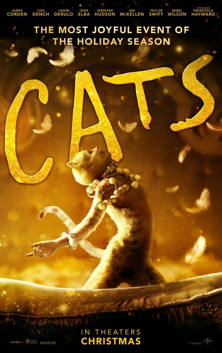 cats-763307770-large